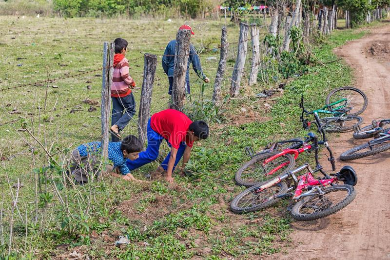 四个小巴拉圭男孩爬行在篱芭下到他们的自行车 免版税库存照片