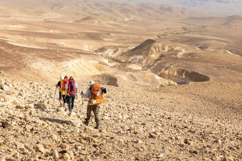 四个背包徒步旅行者供徒步旅行的小道, Neqev沙漠,以色列 免版税图库摄影