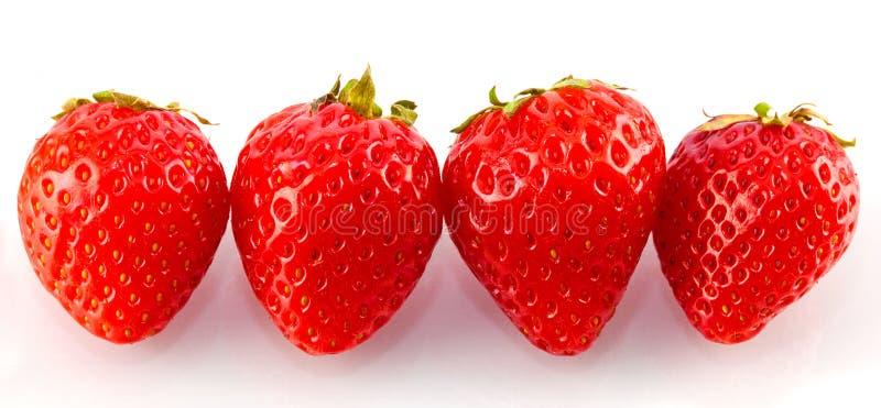 四个草莓 库存图片