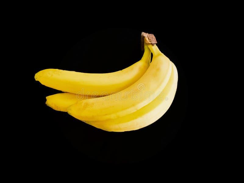 四个黄色香蕉 库存照片