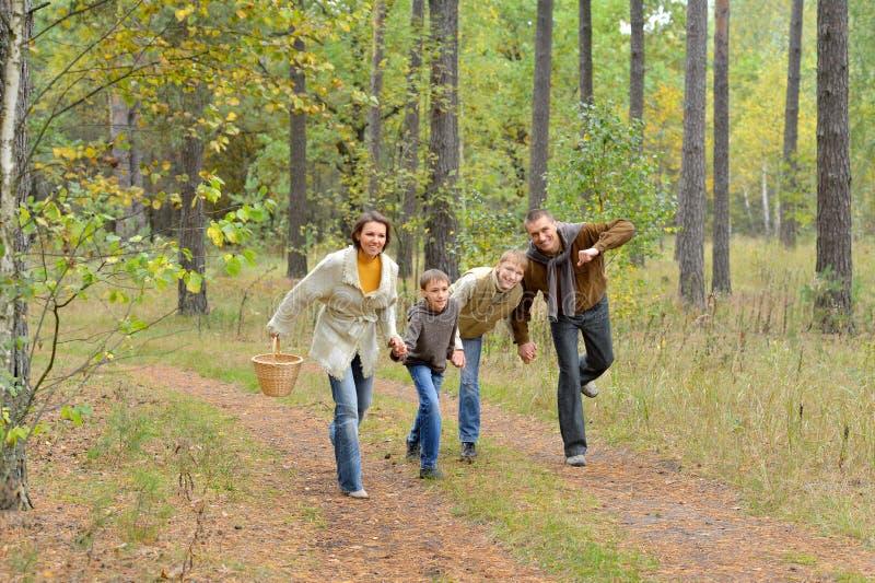 四口之家画象在公园 免版税库存图片