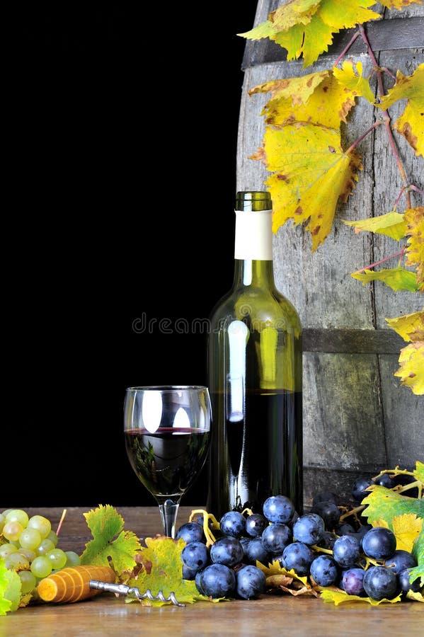 四品尝的酒 免版税图库摄影
