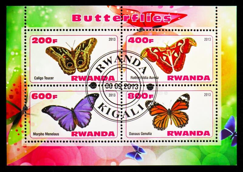 四在从蝴蝶serie的卢旺达打印的邮票,大约2013年 向量例证