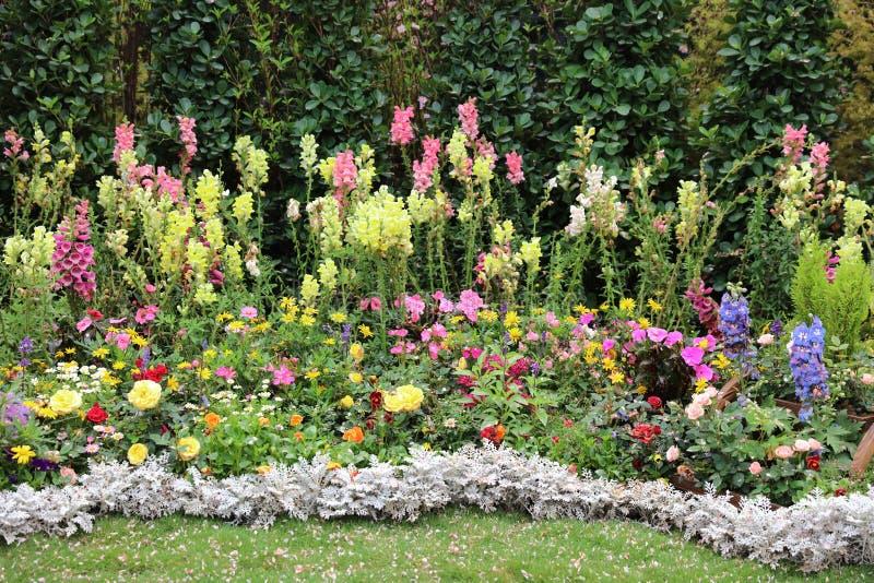 Download 四季不断的庭院花床在春天 库存图片. 图片 包括有 从事园艺, 翠雀, 多年生植物, 绽放, 假山庭园, 庭院 - 89627483