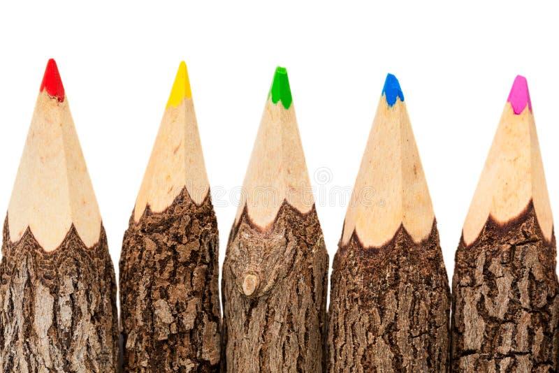 四支未加工的原木铅笔,隔绝在白色背景, 免版税库存图片