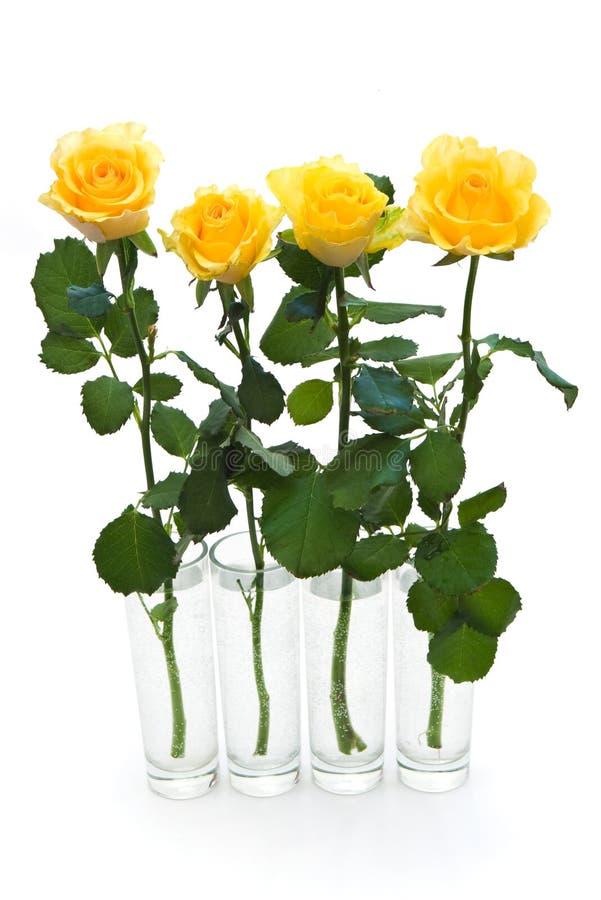 四朵玫瑰黄色 库存照片