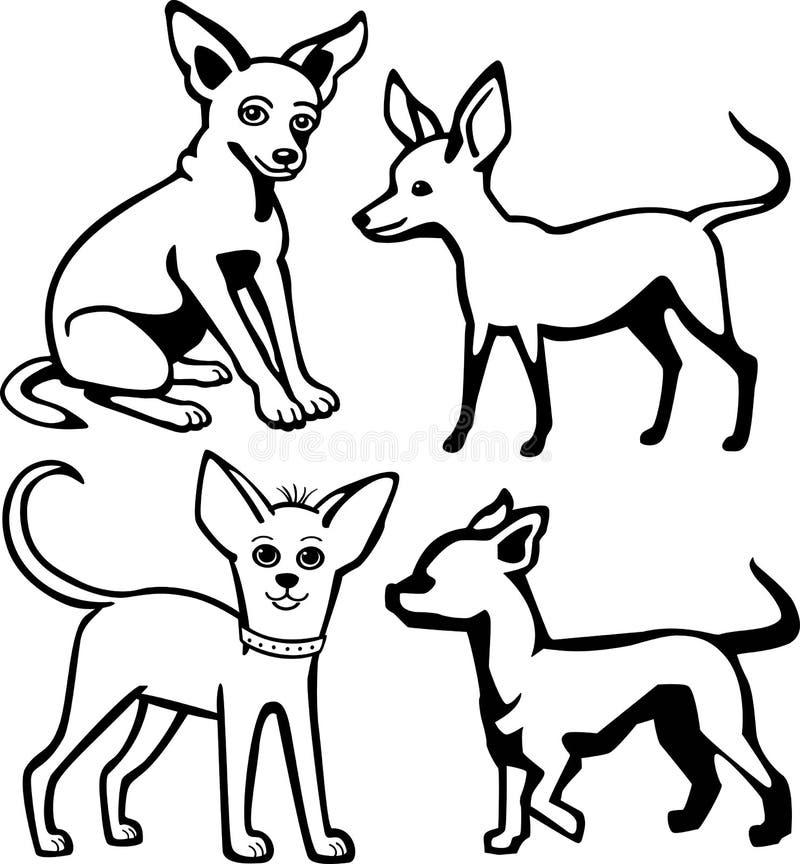 四条奇瓦瓦狗狗 皇族释放例证