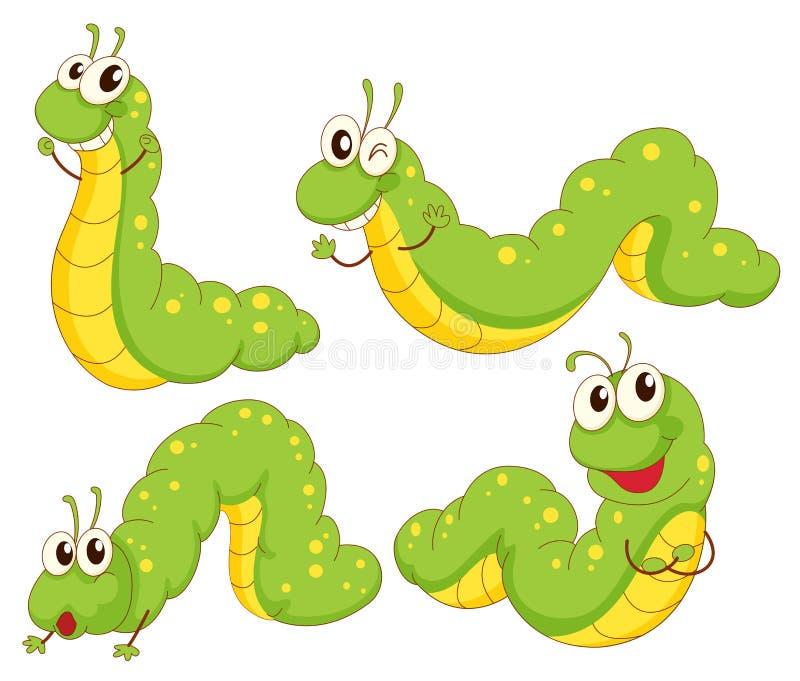 四条绿色毛虫 库存例证