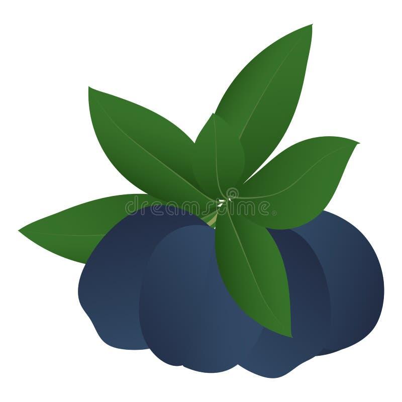 四片成熟李子和叶子 向量例证