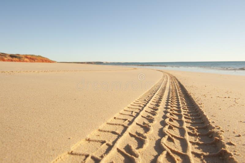 四轮驱动的汽车轮胎轨道沙滩 免版税库存图片