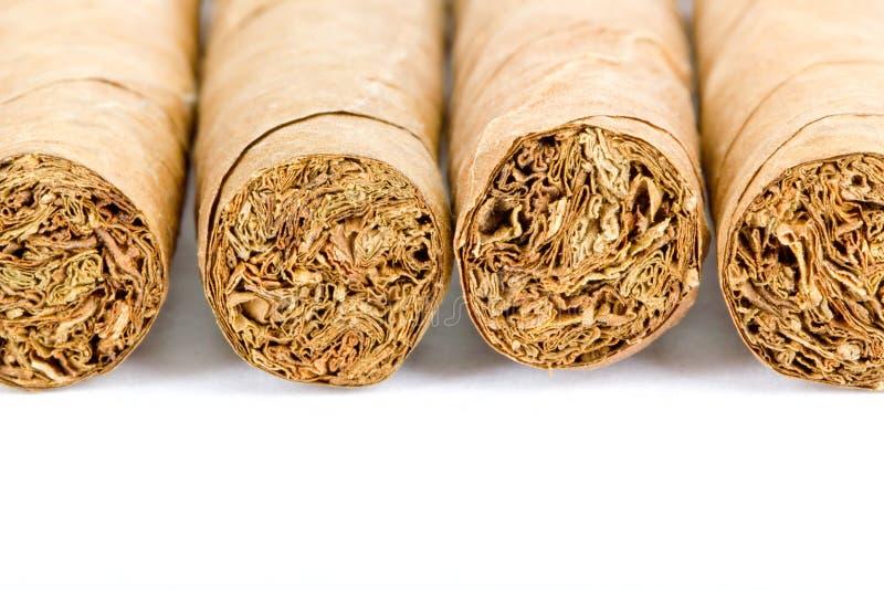 四雪茄 库存图片