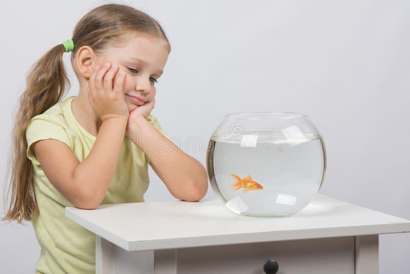 四年女孩看在水族馆的一个金鱼 图库摄影