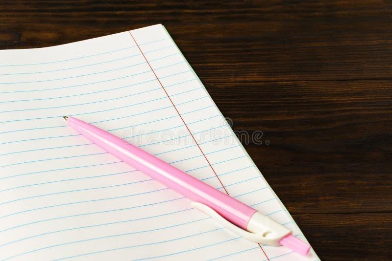 回到学校-在书背景特写镜头,大模型,拷贝空间的桃红色笔的教育概念 库存图片