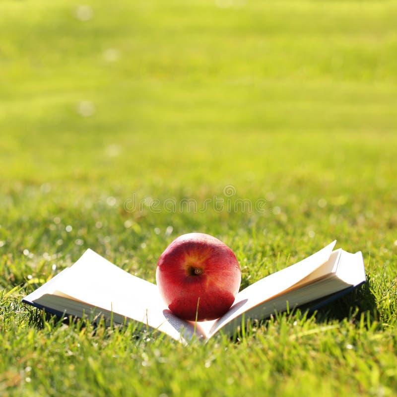回到学校 打开书和苹果计算机在草 免版税库存图片