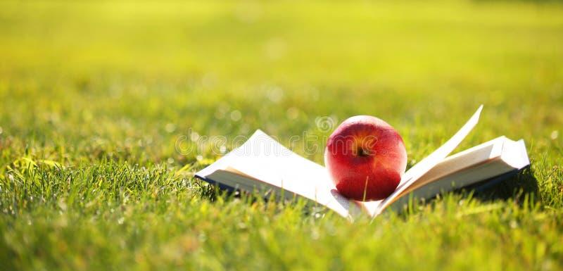 回到学校 打开书和苹果计算机在草 库存照片