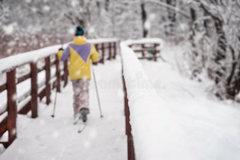 回到我们的无法认出的滑雪者,跑在滑雪在冬天森林在冷的多雪的天,过木桥 滑雪雪体育运动跟踪冬天 免版税库存图片