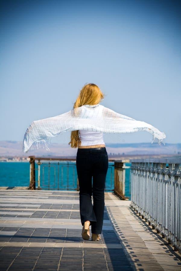 回到白肤金发的桥梁无忧无虑的概念妇女 免版税库存图片