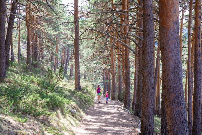 回顾在妇女旁边的女孩步行在一条道路在森林里近到马德里 库存图片