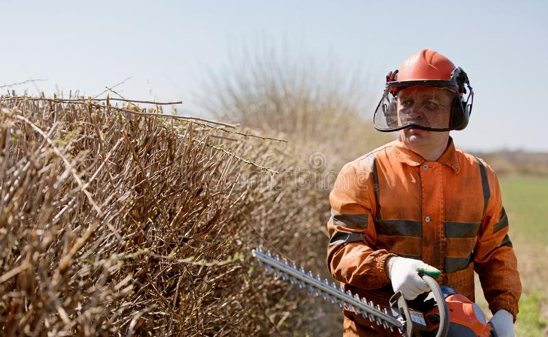 园丁制服的人工作者用在布什裁减工作期间的树篱修剪机设备 库存图片