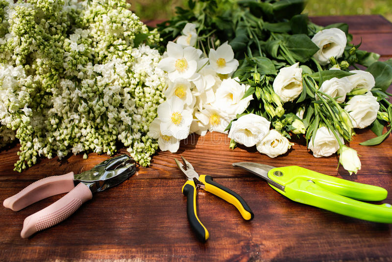 园艺工具、植物和土壤在葡萄酒木桌上 反弹在与大方的本体空间的庭院概念背景中 库存图片
