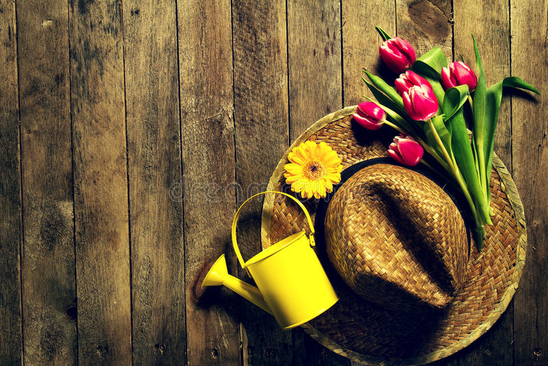 园艺工具、花、喷壶和草帽在葡萄酒 免版税图库摄影
