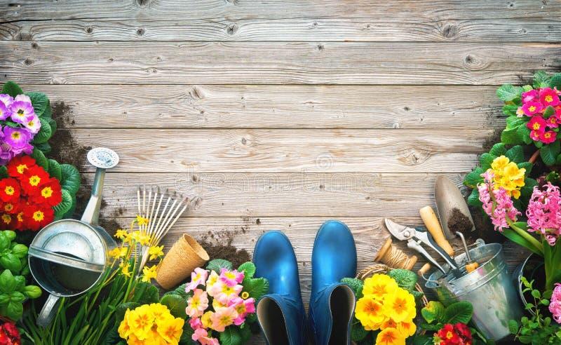 园艺工具和春天花在大阳台 图库摄影