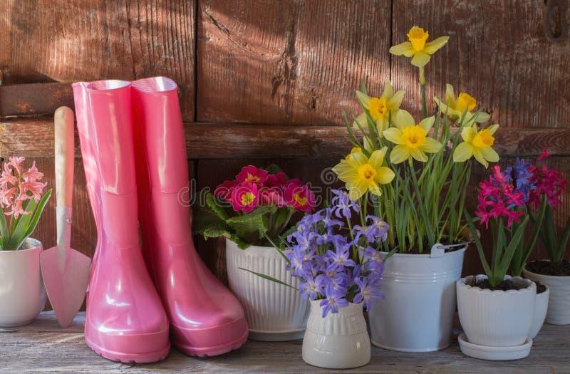 园艺工具和春天花 库存照片