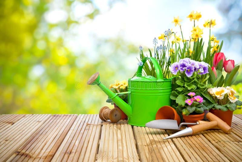 园艺工具和花在大阳台 免版税库存照片