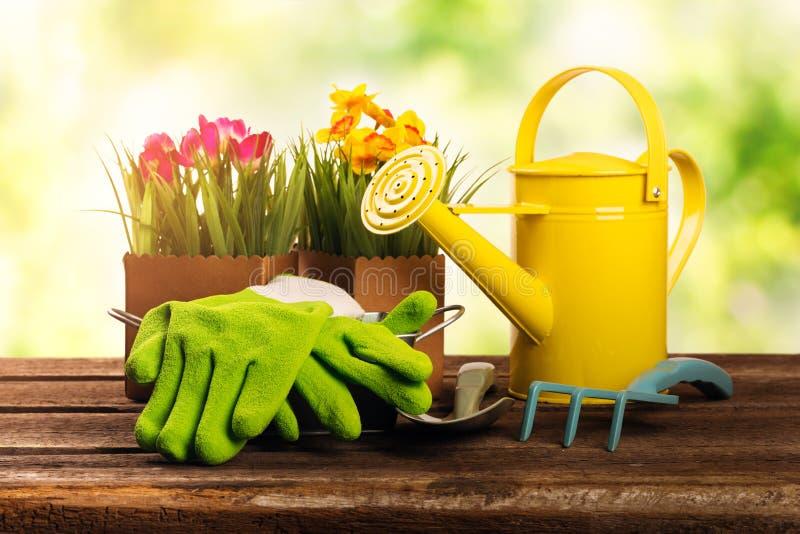 园艺工具和花在老木桌上 免版税库存图片