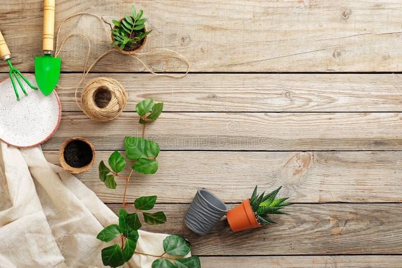 园艺工具和花在葡萄酒木书桌上 从事园艺或种植概念 庭院春天工作 平的位置,上面 图库摄影