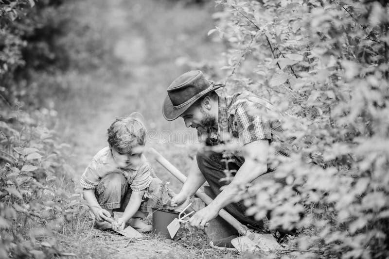 园艺工具 r 教一点儿子关心植物的爸爸 春天从事园艺的惯例 r 免版税库存照片