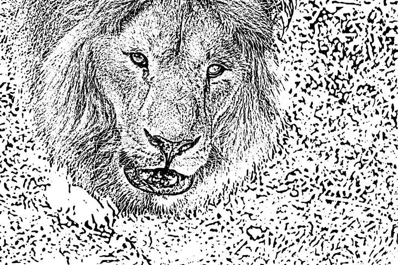 困厄的半音难看的东西黑白传染媒介纹理-真正的狮子头 创作摘要葡萄酒的背景 向量例证