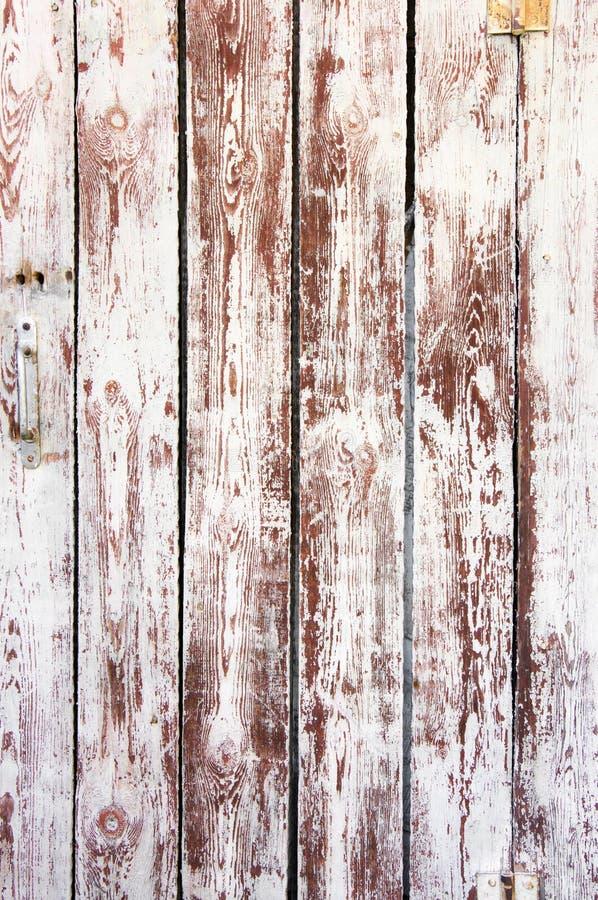 困厄的被风化的木头 库存图片