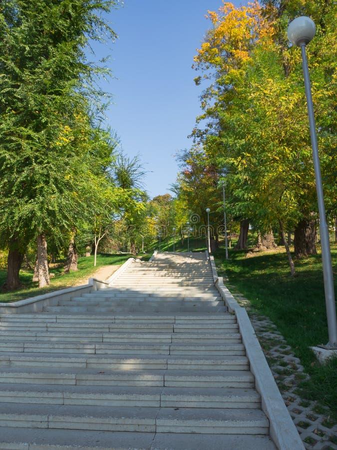 困难的几何楼梯在公园 台阶的曲线 库存照片