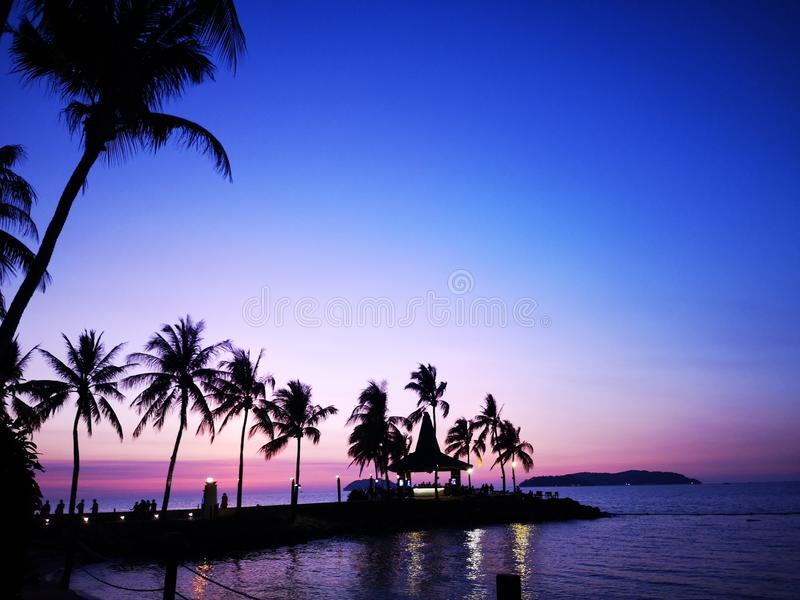 围拢与在岸的椰子的美好的日落 库存图片