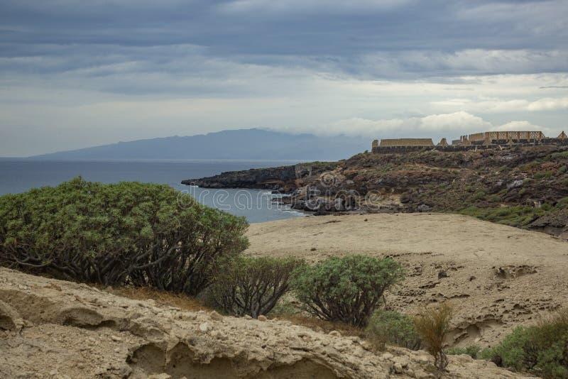 围拢由canarian地方性乳草大戟属balsamifera在阿德赫,特内里费岛,加那利群岛南部的典型的峡谷  免版税库存图片