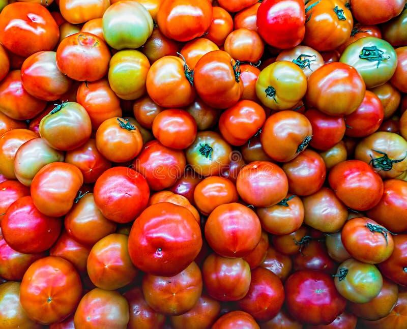围绕蕃茄的小红色樱桃在被采取的收获以后入交付前 免版税库存图片