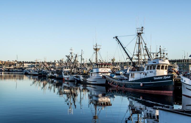 围网渔船在渔夫` s终端停泊了在西雅图华盛顿 免版税库存照片