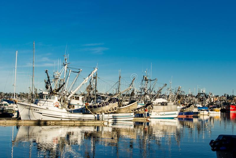 围网渔船在渔夫` s终端停泊了在西雅图华盛顿 库存图片