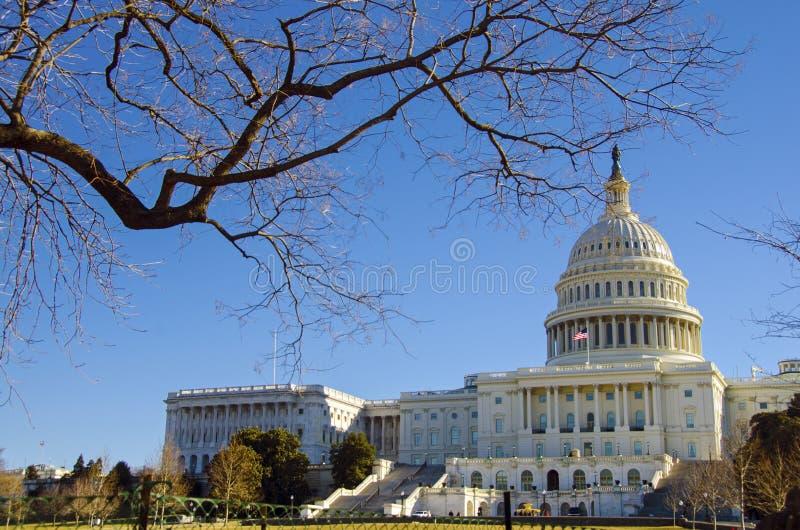 国会大厦dc状态团结了华盛顿 免版税库存照片
