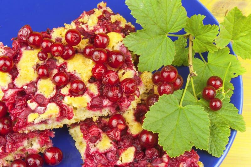 国内无核小葡萄干点心,做由新鲜被采摘的无核小葡萄干 在板材的自创甜点心 库存照片