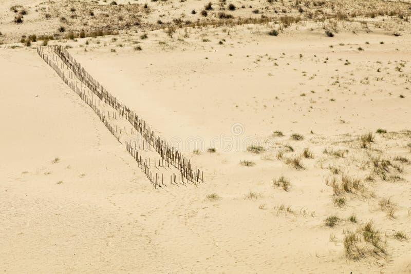 国家公园库尔斯沙嘴 库存照片