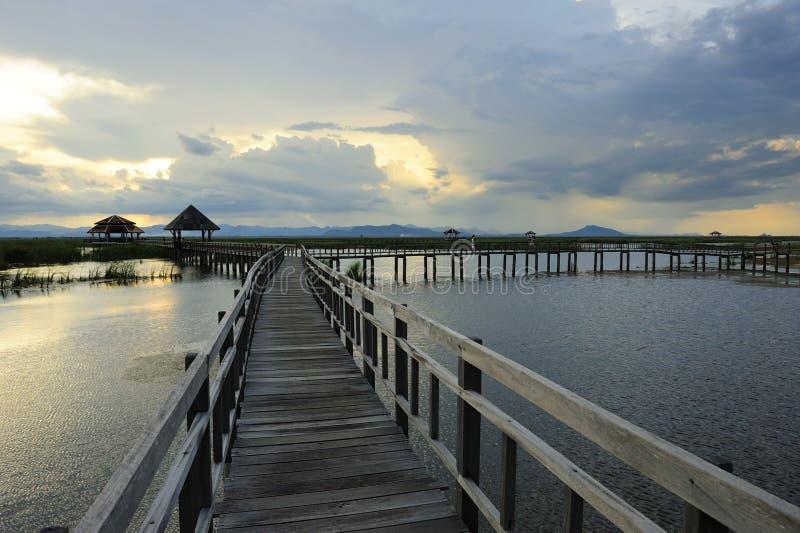 国家公园木桥 免版税库存图片