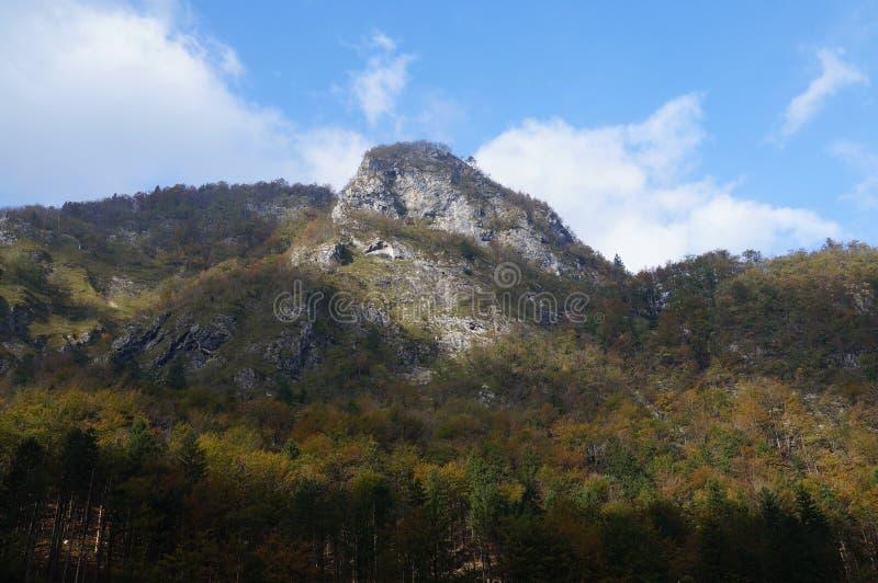 国家公园特里格拉夫峰,斯洛文尼亚 图库摄影