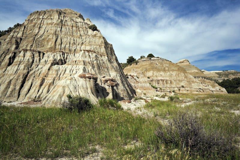 国家公园罗斯福西奥多 免版税库存图片