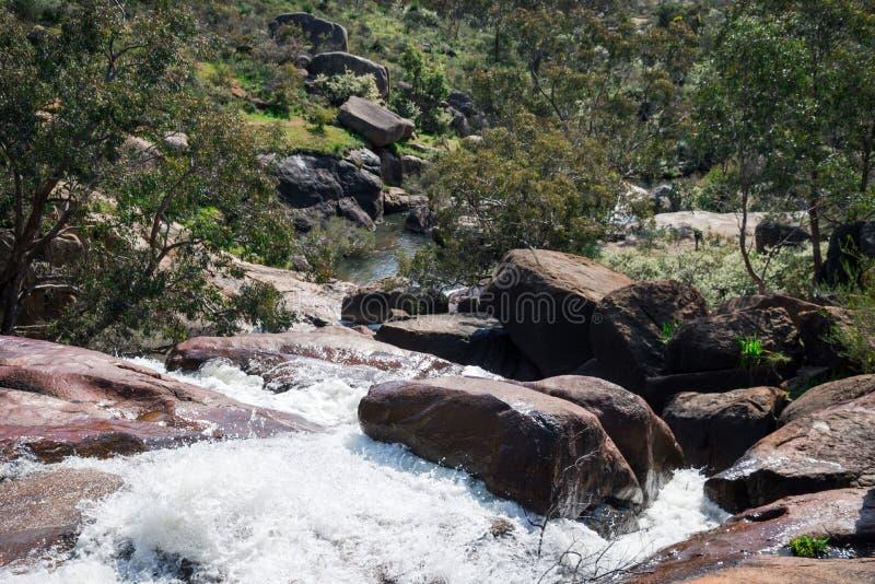 国家公园跑在约翰Forrest国家公园的秋天流程 免版税库存照片