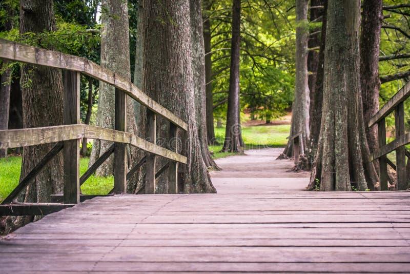 国家公园路径优胜美地 免版税图库摄影