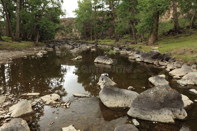 国家公园Orkhon谷Ulaan Gol河 库存图片