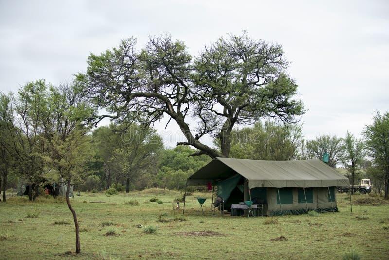 国家公园serengeti坦桑尼亚帐篷 免版税库存图片