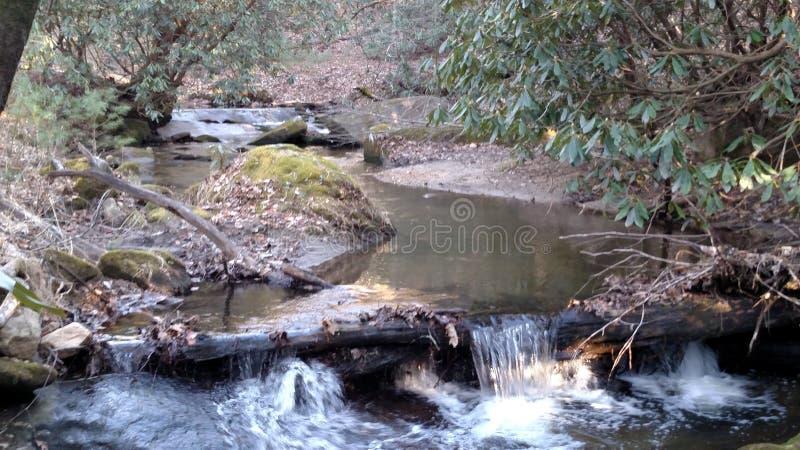 国家小河 库存照片